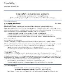 Resume Examples For Professionals by Professional Resume Samples 9 Free Word Pdf Documents Download