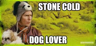 Dog Lover Meme - stone cold dog lover billy dog quickmeme