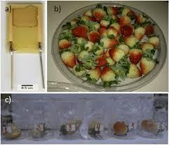 emission cuisine inter ivo hummelgen phd universidade federal do paraná curitiba