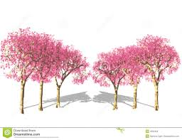 pink tree in royalty free stock image image 4555456