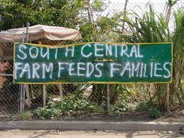 industriel farm cuisine los angeles ca south central farm