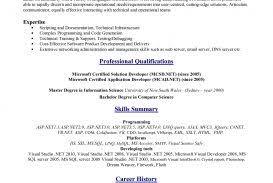 standard resume format for engineering freshers pdf to excel best cv formats pakteacher resumesard resume format for freshers