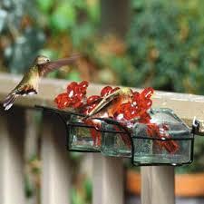 flower box hummingbird feeder a proper garden