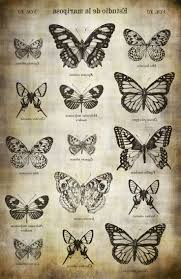 butterfly and lion tattoo best 10 butterfly tattoos images ideas on pinterest butterfly