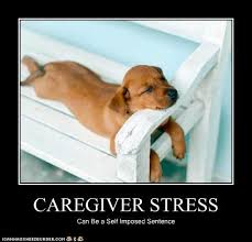 Funny Stress Memes - caregiver stress super cute from the heart elder care llc