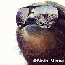 Sloth Meme Pictures - sloth meme sloth meme twitter
