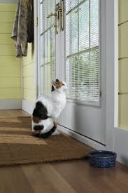 65 best pella designer series windows doors images on pinterest convert a corner nook into the ultimate squirrel watching window seat for your pet