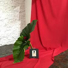 Ren Hang Photos Totem Collective X Ren Hang