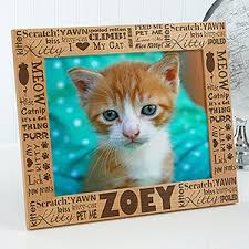 personalized cat gifts personalized cat picture frames 8x10 pet gifts