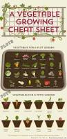 permaculture vegetable garden layout large scale gardening resource hub for maximizing food quality and