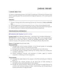 Channel Sales Manager Resume Sample by Polymer Sales Resume