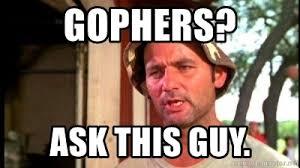 Murray Meme - gophers ask this guy bill murray caddyshack meme generator