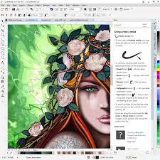 amazon com coreldraw graphics suite 2017 amazon exclusive