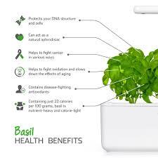 amazon com click u0026 grow smart garden 3 indoor fresh herb