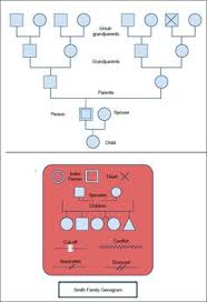 genogram template 12 genograms pinterest symbols family