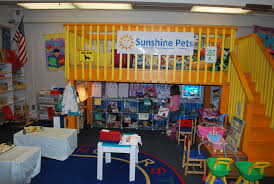 preschool projects vet pet store imaginary play