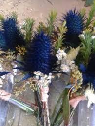 Flower Shops In Augusta Maine - 100 flower shops in augusta ga maine flower delivery by