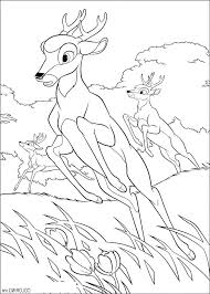 coloring pages of deer hunting gallery of deer hunting coloring