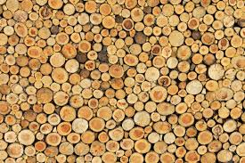 wood wall texture big wall texture made from log wood stock photo picture and
