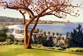 coral tree with la jolla shores painting by helmreich