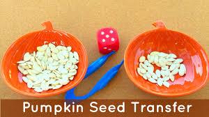 pumpkin seed transfer preschool and kindergarten math and fine