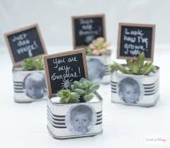 cheap personalized party favors mini succulent garden personalized birthday party favors atta
