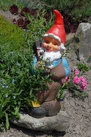 Garden Nome by Garden Gnomes Photos