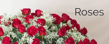 honolulu florist flower delivery by watanabe floral