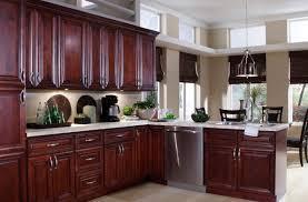 Nautical Kitchen Cabinet Hardware by Shocking Art Kitchen Exhaust Hood Superb Nautical Kitchen Rugs In