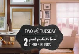 Timber Blinds Review Top 5 Window Covering Problems And Solutions Blindsmax Blog