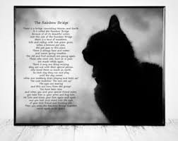 pet bereavement the rainbow bridge poem pet bereavement