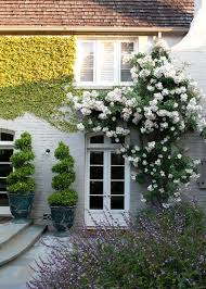 The Trellis And The Vine Care And Training For A Vine Covered Home