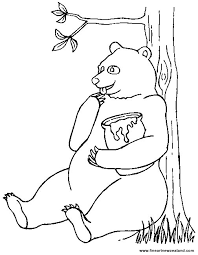 the honey bear eating from a jar coloring in picture for kids