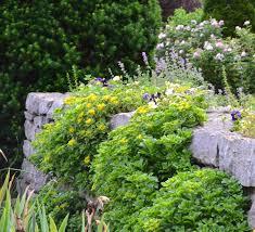 Garden Rock Wall by Wegerzyn Gardens A Photo Tour Horticulturehorticulture