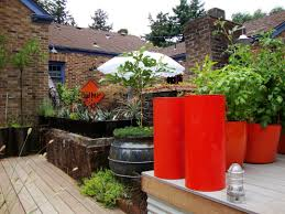 Australian Garden Ideas by Danger Garden This Is Crazy Colorfully Cool Idolza
