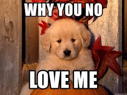 Why You No Love Me Meme - why you no love me why you no love me meme generator
