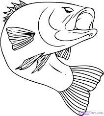 salmon fish coloring page chinook salmon coloring page the crypt