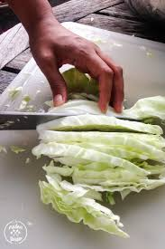 best 25 freezing cabbage ideas on pinterest cabbage head