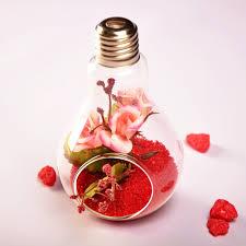 aliexpress com buy new glass bulb lamp shape flower water plant