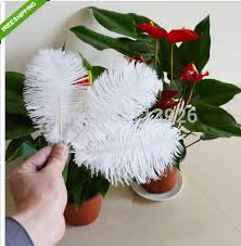 Ostrich Feather Centerpieces Wholesale by Wholesale Ostrich Feather Centerpieces Promotion Shop For