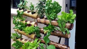 diy vertical garden design ideas 2017 youtube