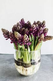 Indoor Plant Arrangements 117 Best Indoor Garden Luv Images On Pinterest Plants Gardening