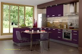 cuisine couleur aubergine 30 luxe cuisine gris aubergine graphisme meilleur design de cuisine