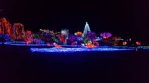 Zoo Lights Pt Defiance by December 2016 What We Do