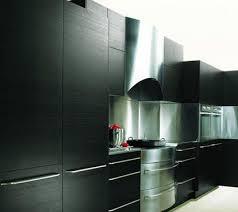 Neff Kitchen Cabinets Luxury Kitchen By Neff The Ash Kitchen