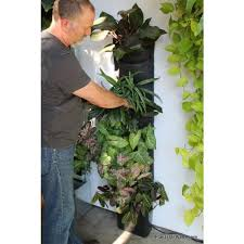 Indoor Vertical Gardening - indoor vertical garden kit indoor living wall kit with rustic
