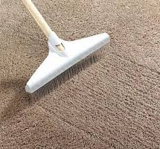 best carpet rakes for removing pet hair from carpets and shag rugs
