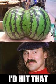Watermelon Meme - gallagher the hitter of that dhtg