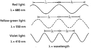 what is the wavelength of red light reading on color light part i