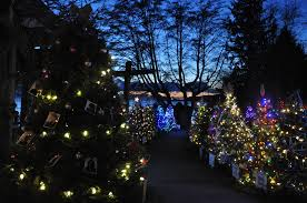 where to see beautiful christmas lights on the north shore